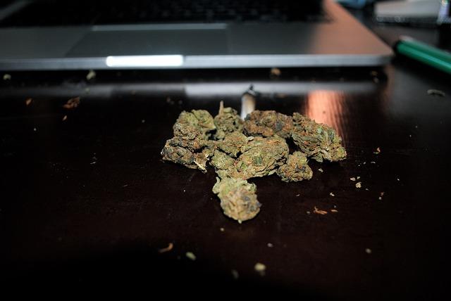 Debate over recreational marijuana grows in Pueblo
