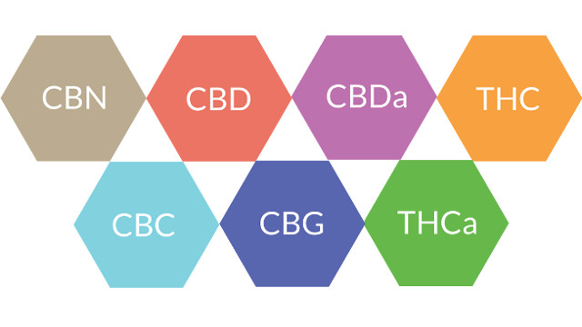 Therapeutic uses of cannabis and cannabinoids