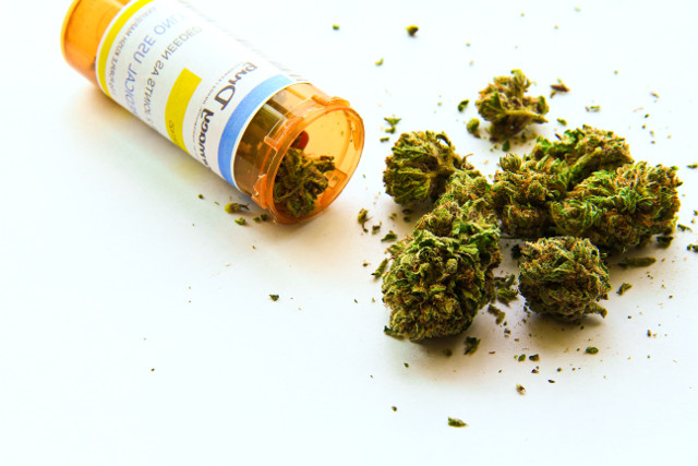 Cannabis vs Opioids: Solution to Chronic Pain?