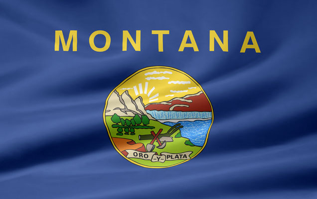 How to Qualify for Medical Marijuana in Montana