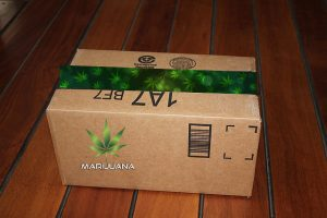 Buy Weed Online? Is It Safe? Will It Arrive? What About The Feds?